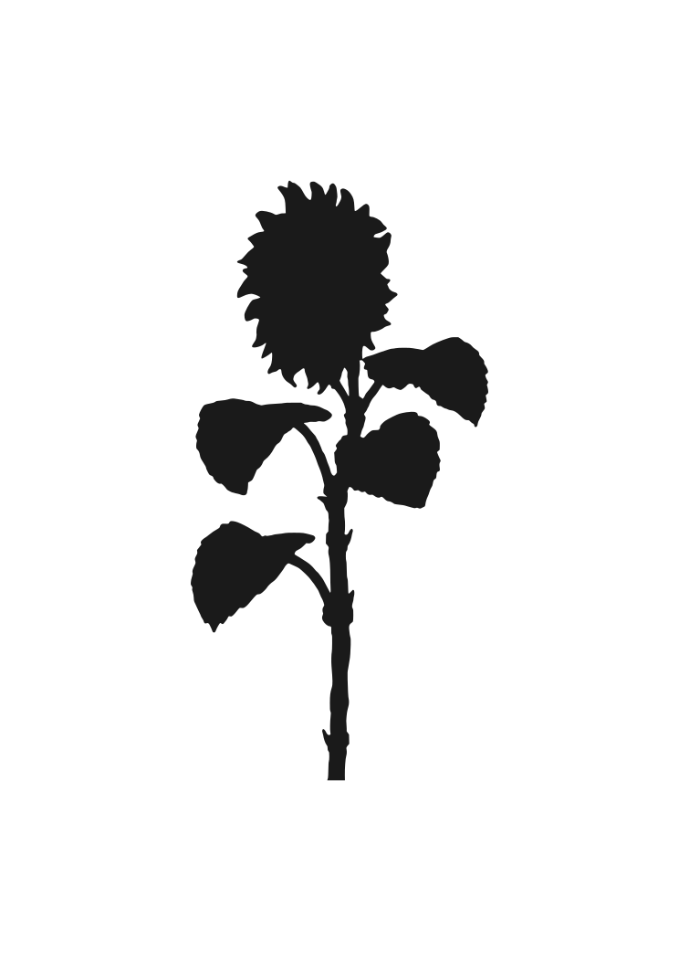 Download Sunflower Silhouette Free SVG File - SvgHeart.com